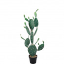 Cactus / Prickly Pear, potted, height 119cm, green